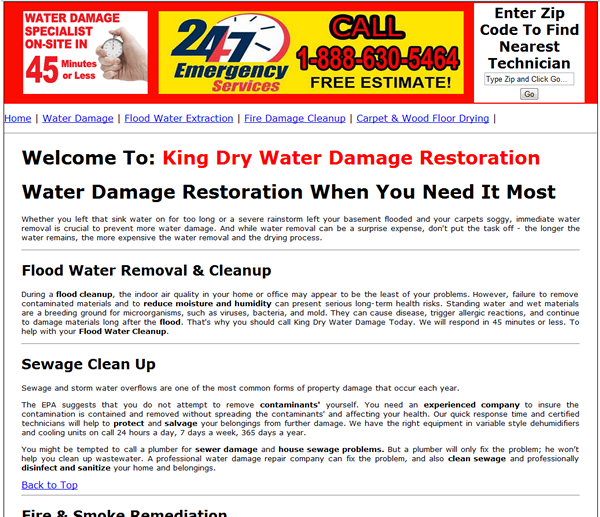 Floodwater Damage Cleanup Services Original Websites- Single Landing Page before The Crafty Canvas