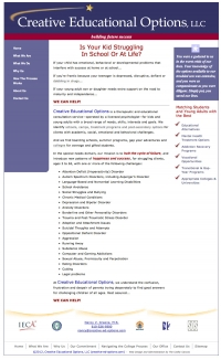 Creative Educational Options- Custom CSS Theme, Search Engine Optimized Content