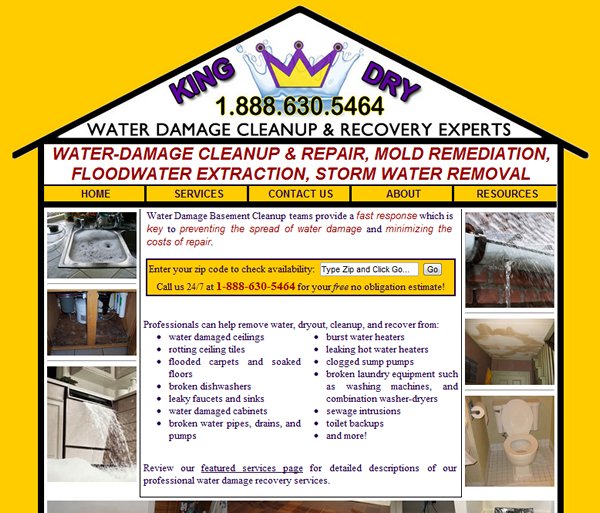 Water Damage Basement Cleanup Website Development- Design, Launch, and Maintenance
